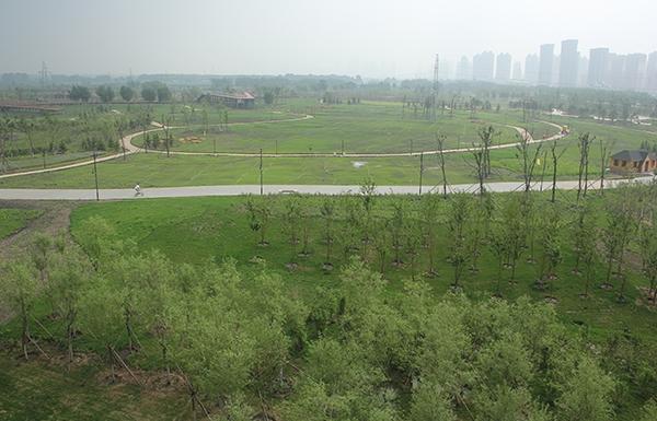 哈尔滨群力外滩生态湿地项目